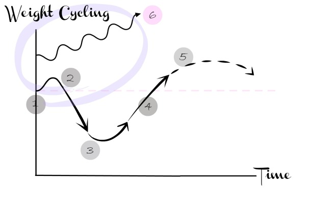 Diet Cycle 4